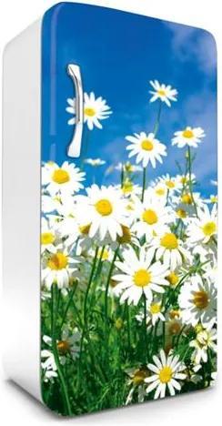 Samolepiace tapety na chladničku, rozmer 120 cm x 65 cm, margaréty, DIMEX FR-120-011
