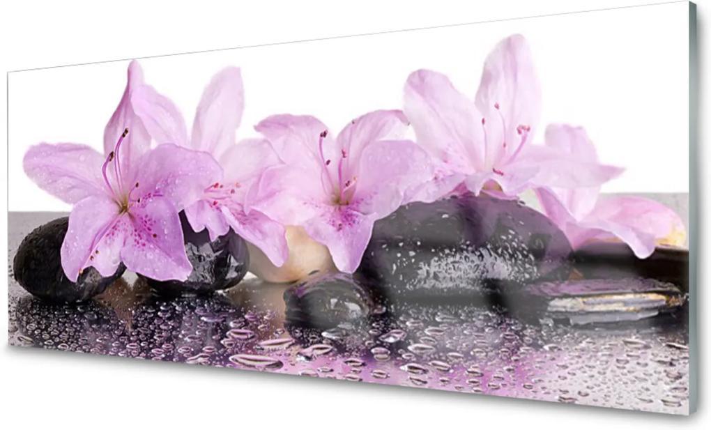Sklenený obklad Do kuchyne Kvety Kamene Zen Kúpele