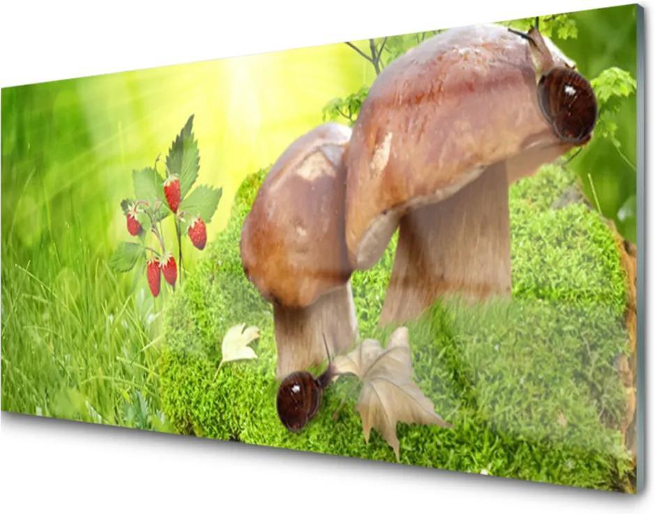 Obraz na skle Houby divoké jahody