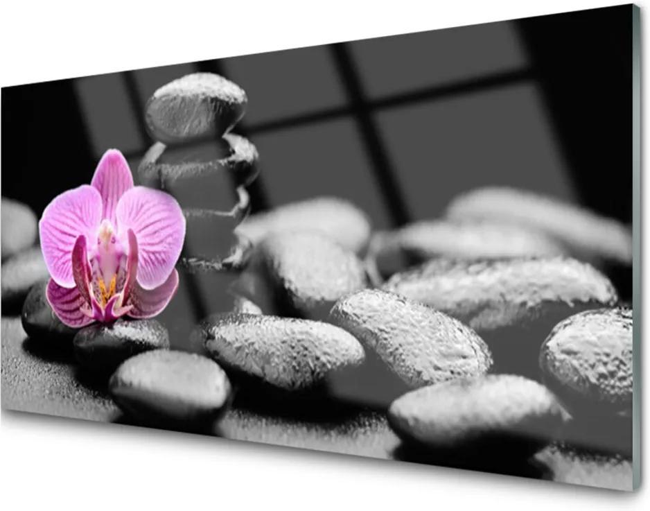 Skleněný obraz Kvet Kamene Umenie