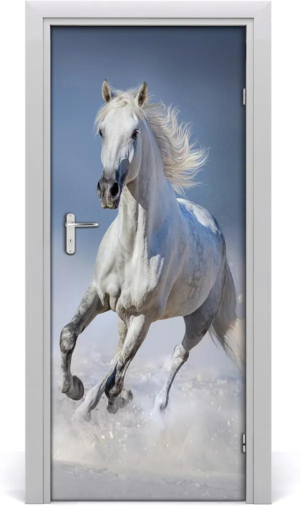 Samolepící fototapeta na dveře Kůň ve cvalu