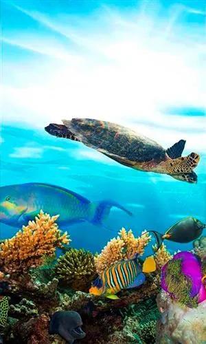 Vliesové fototapety, rozmer 150 cm x 250 cm, morské ryby, DIMEX MS-2-0216