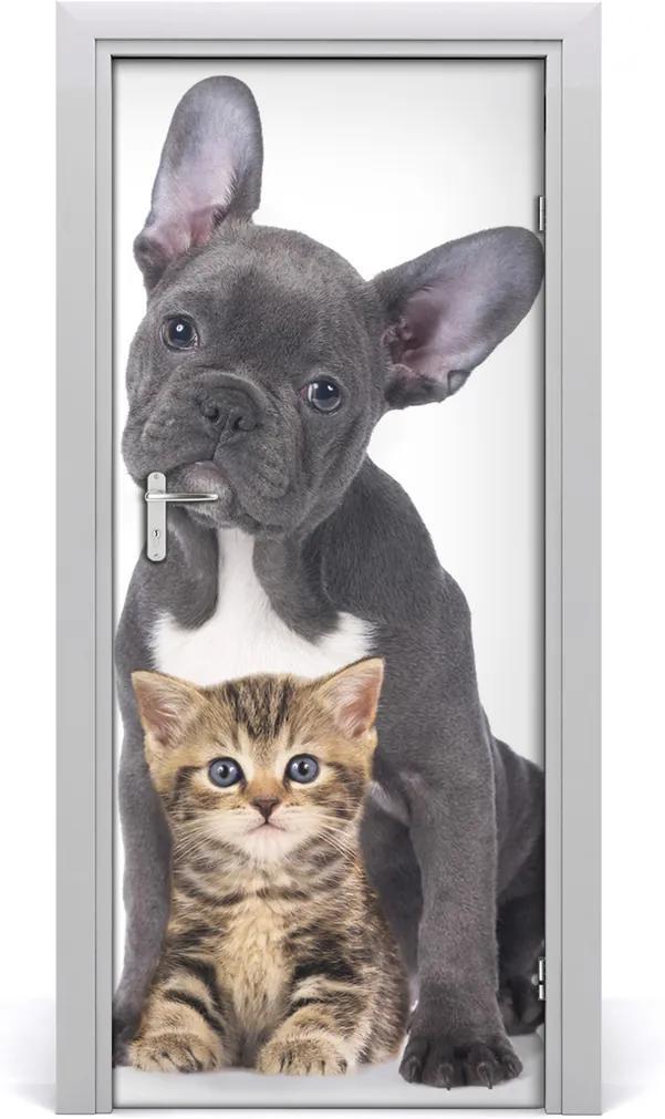 Samolepící fototapeta na dveře Pes a kočka