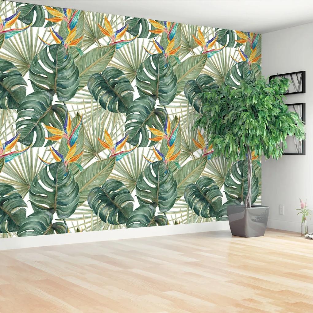 Fototapeta Exotické rostliny