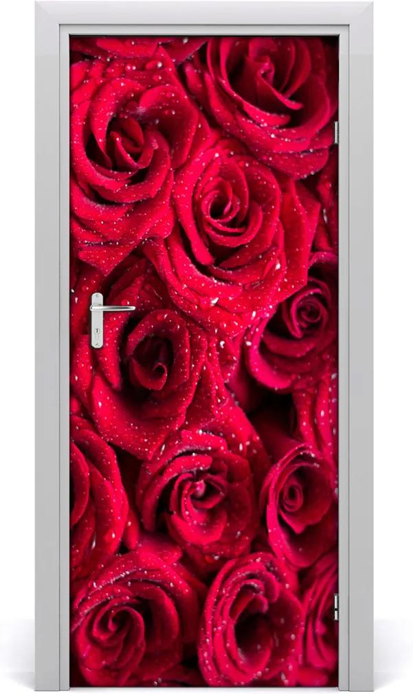Fototapeta na dvere  červená ruža