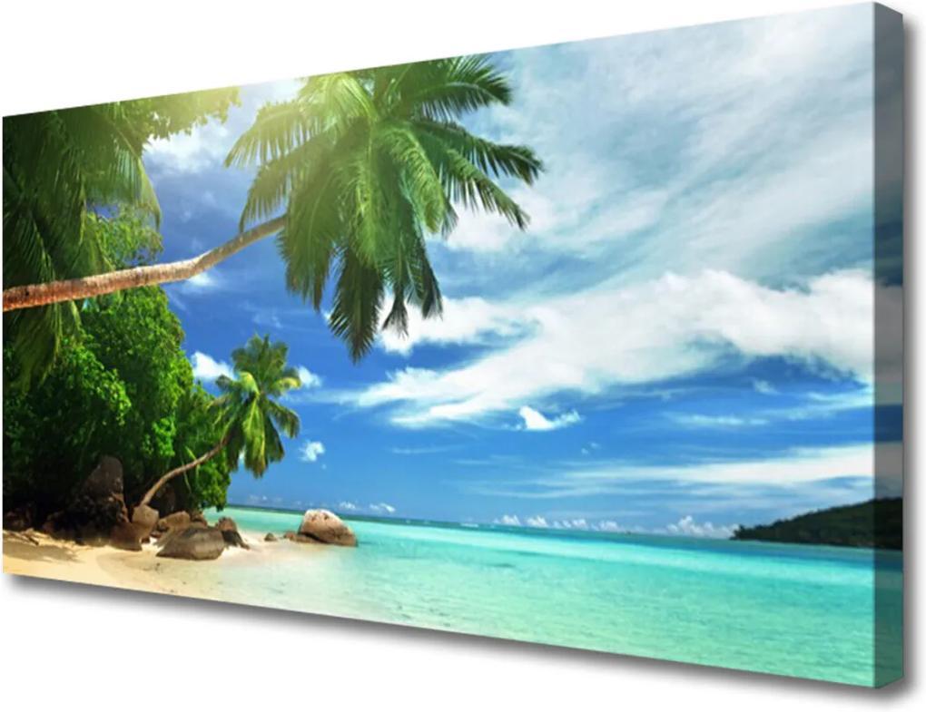 Obraz Canvas Palma Pláž More Krajina