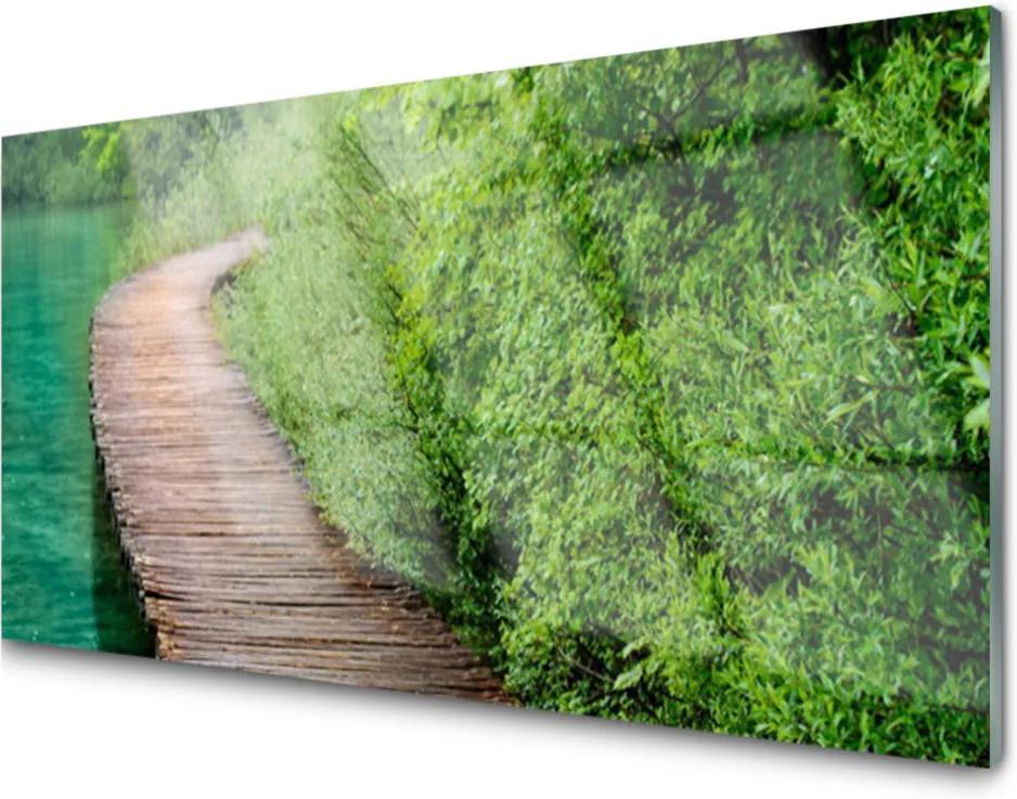 Plexisklo obraz Most stromy architektura