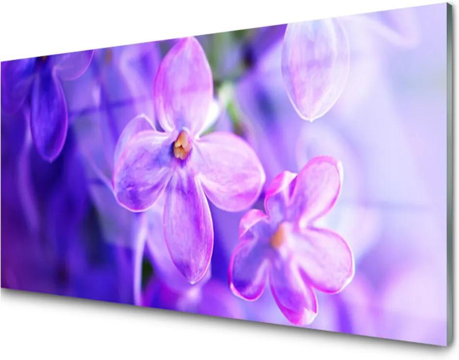Skleněný obraz Fialové květiny příroda
