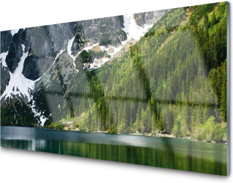 Sklenený obklad Do kuchyne Jazero Les Hory Príroda