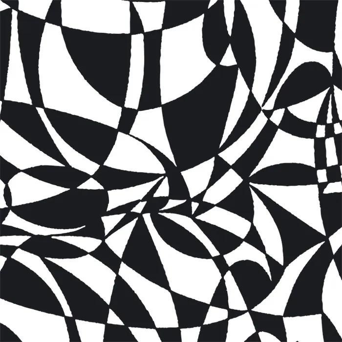 Dimex fototapeta Čiernobiely abstrakt L-405   220 x 220 cm