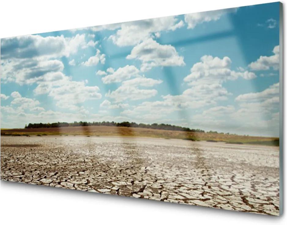 Obraz na skle púšť Krajina