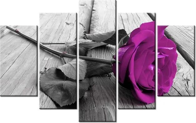 Tlačený obraz Fialová ruža na móle 100x63cm 1803A_5D