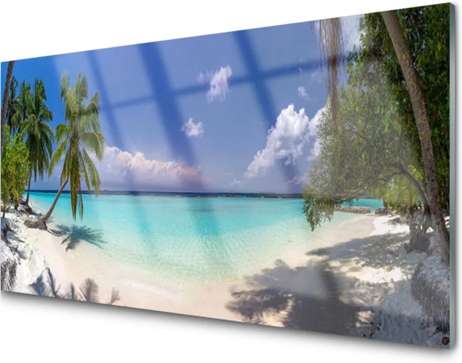 Akrylové obraz Moře pláž palma krajina