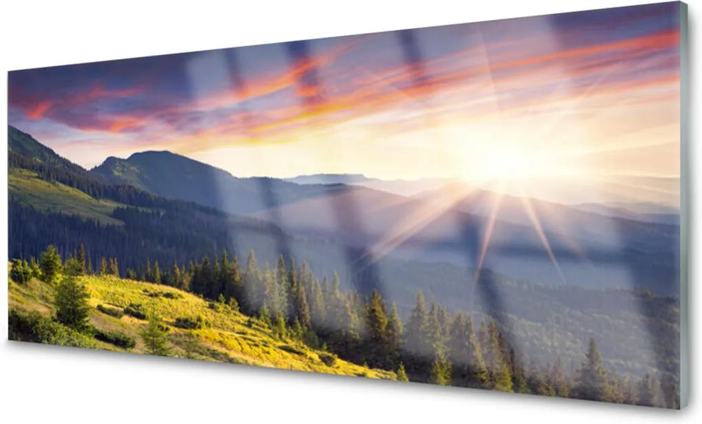Obraz plexi Hora Les Slnko Krajina
