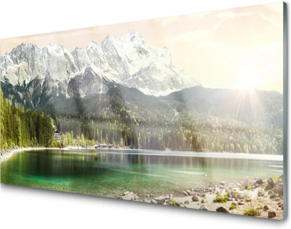 Skleněný obraz Hory les jezero krajina