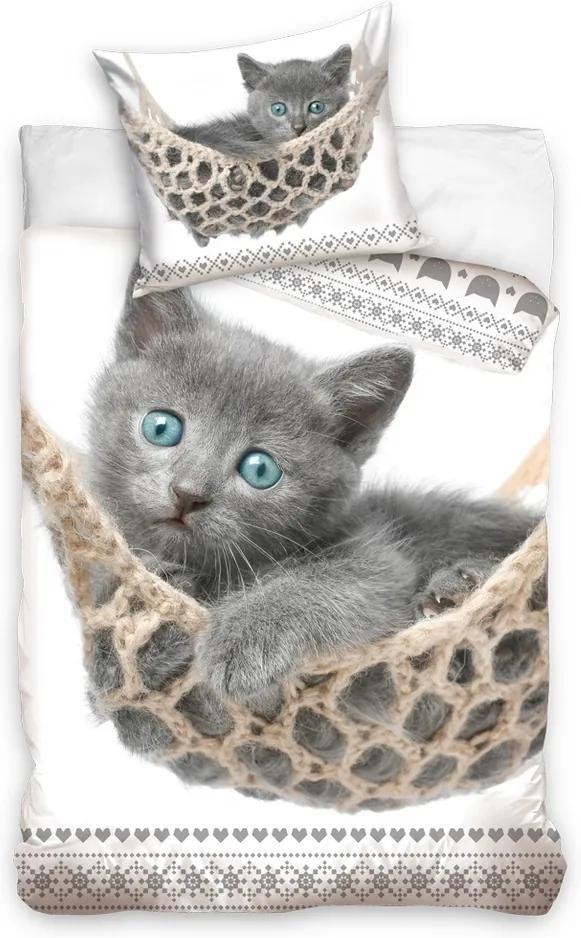 BedTex Bavlnené obliečky Sivé Mačiatko, 140 x 200 cm, 70 x 90 cm