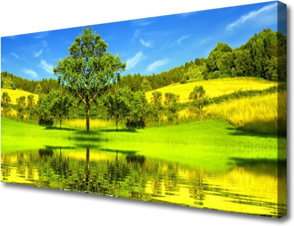 Obraz Canvas Lúka Strom Príroda