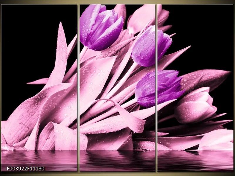 Moderné obrazy - kvety