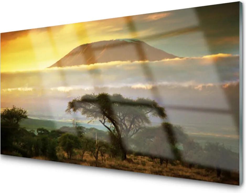 Obraz na skle Strom Hory Príroda
