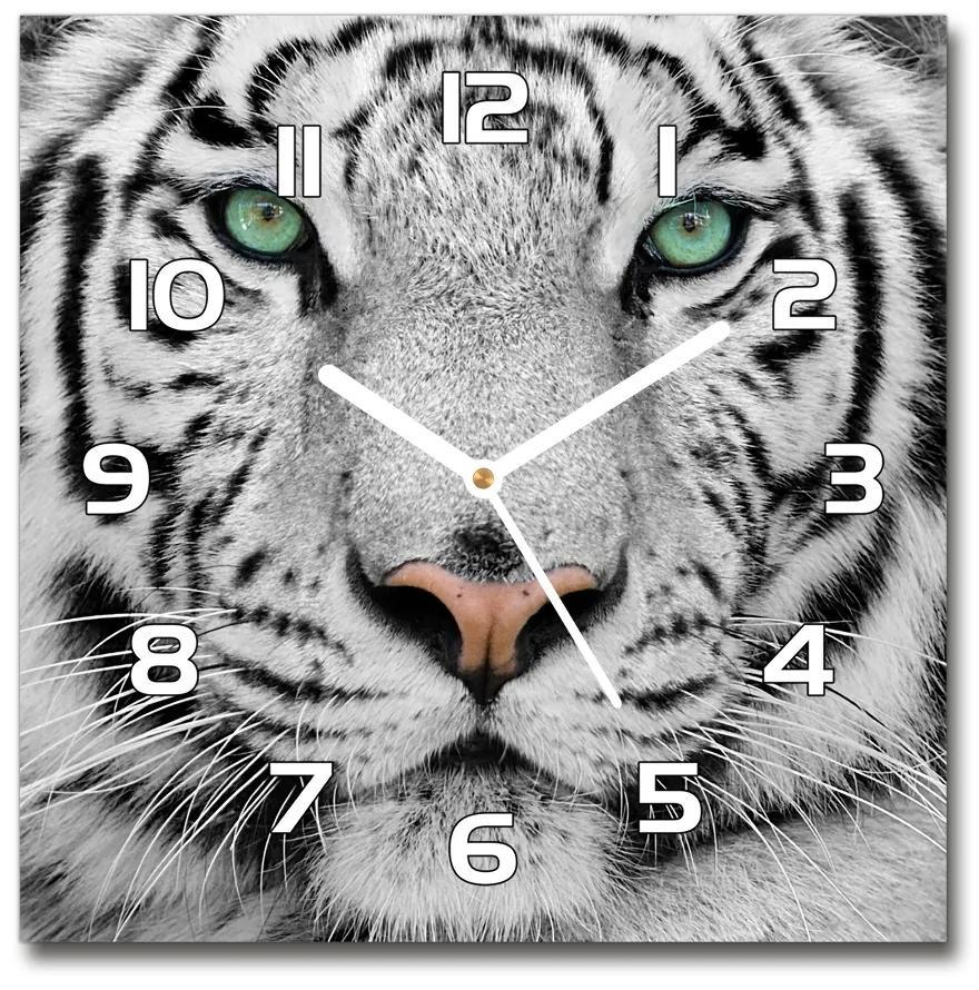 Sklenené hodiny štvorec Biely tiger pl_zsk_30x30_f_13468757