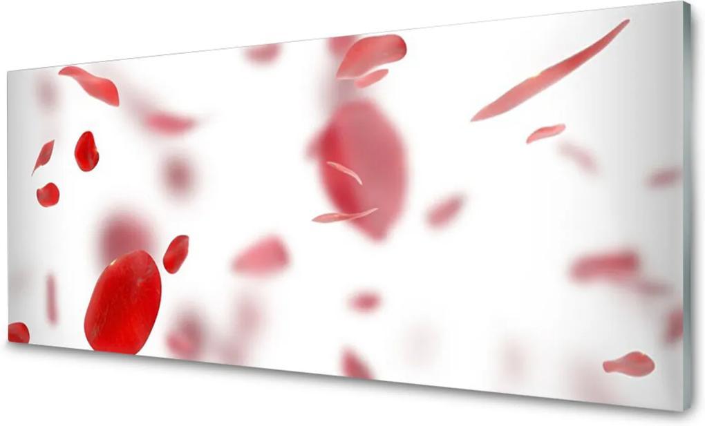 Akrylové obraz Skleněný růže plátky
