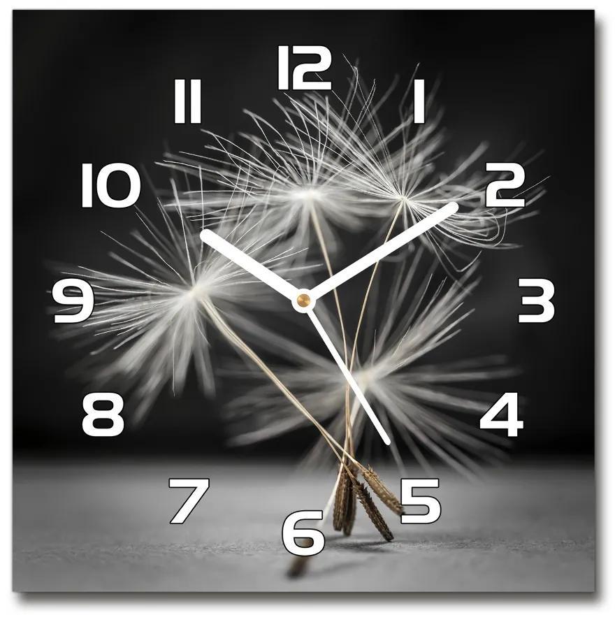 Sklenené hodiny štvorec Semená púpavy pl_zsk_30x30_f_79359123