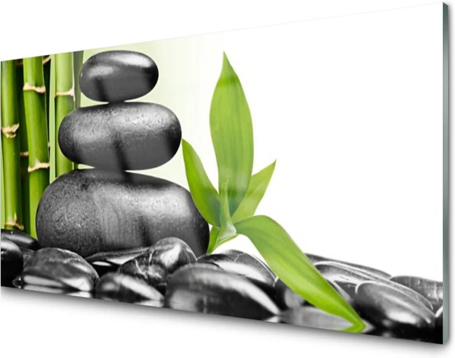 Obraz na akrylátovom skle Kamene Listy Umenie