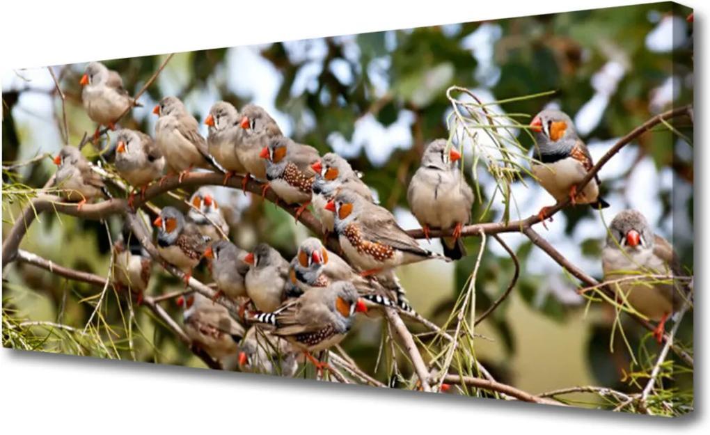 Obraz na plátně Skleněný ptáci zvířata