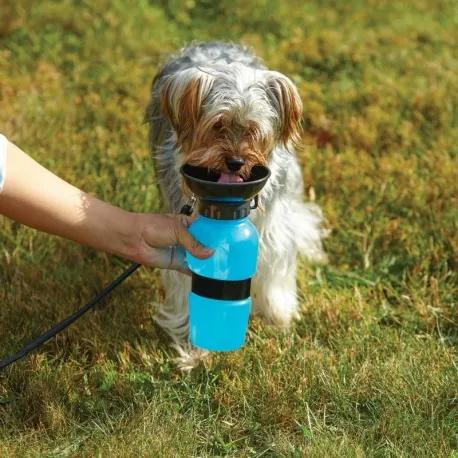 InnovaGoods Cestovná fľaša na vodu pre psov 550ml