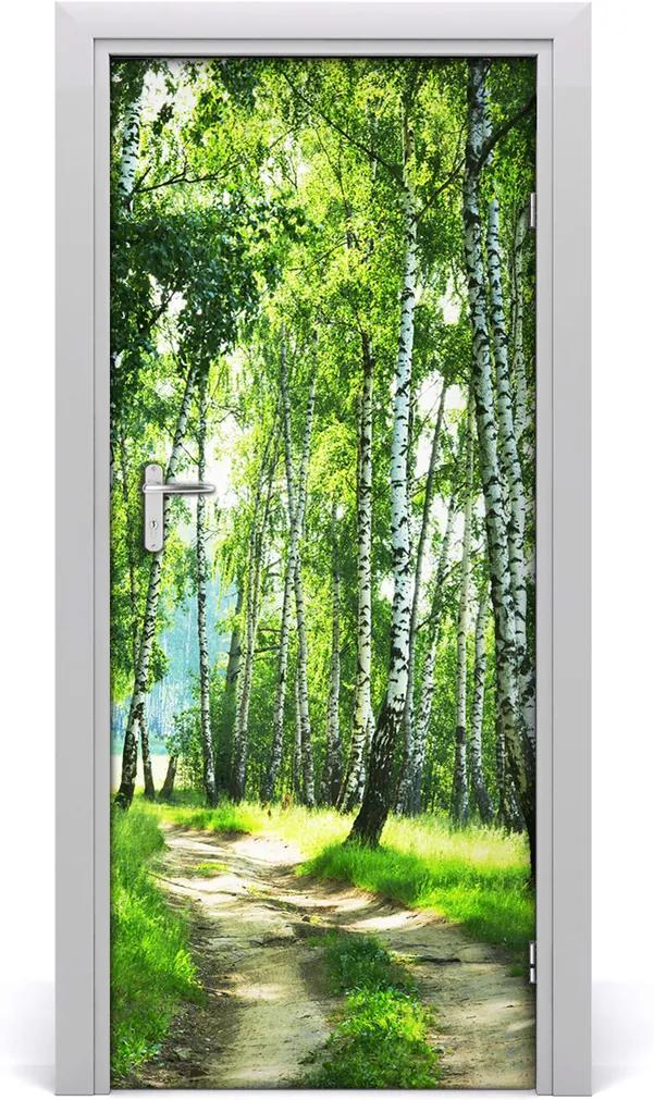 Fototapeta na dveře Břízový les