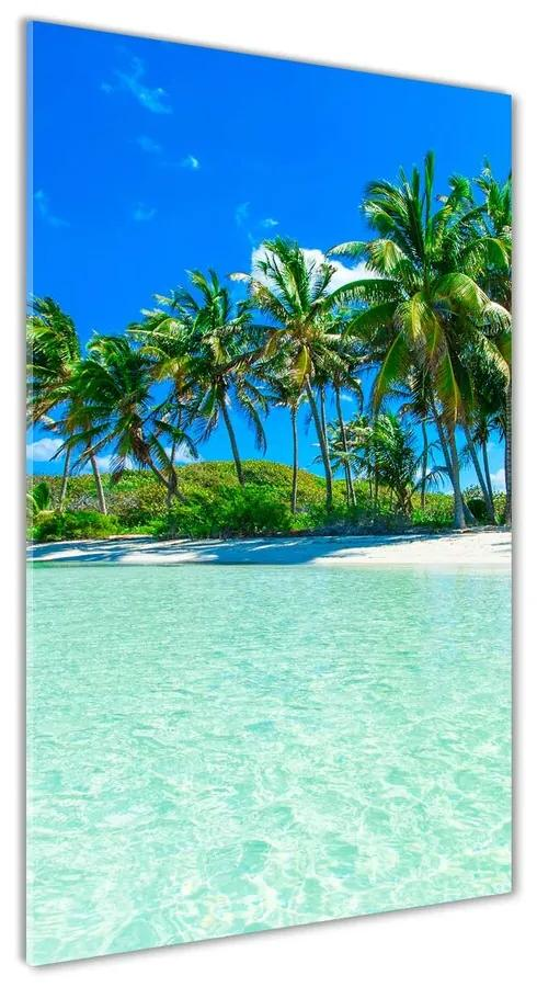 Foto obraz akrylové sklo Tropická pláž pl-oa-70x140-f-99365379