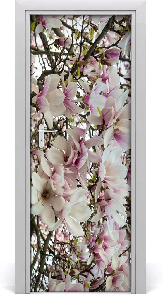 Fototapeta na dveře Květ magnolie