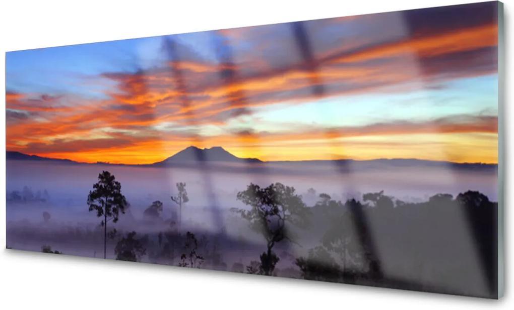 Obraz na akrylátovom skle Stromy Hmla Krajina