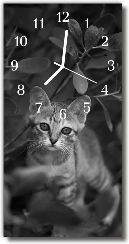 Skleněné hodiny vertikální Zvířata Kočka zvířata šedá