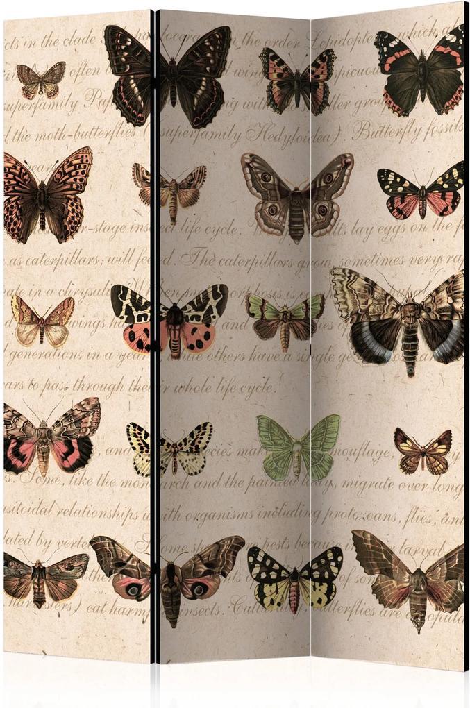 Paraván - Retro Style: Butterflies [Room Dividers] 135x172