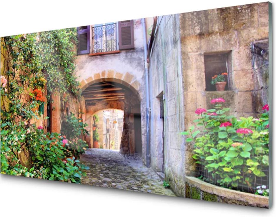 Plexisklo obraz Aleje květiny domy rostlina