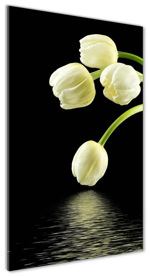 Foto obraz akryl do obývačky Biele tulipány pl-oa-70x140-f-53318527