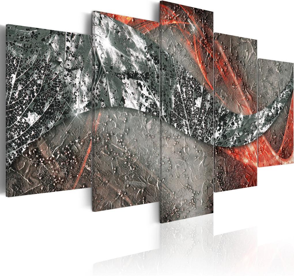 Obraz - Silver Fire 100x50