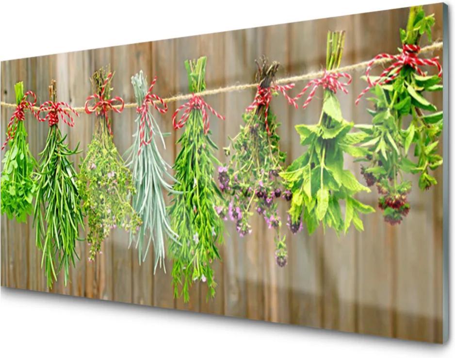 Plexisklo obraz Sušené byliny listy příroda