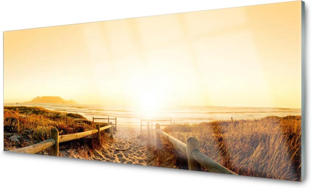 Skleněný obraz Stezka pláž moře
