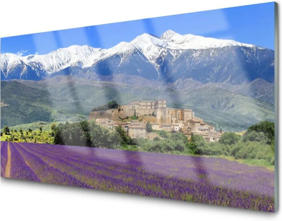 Akrylové obraz Louka květiny hory krajina