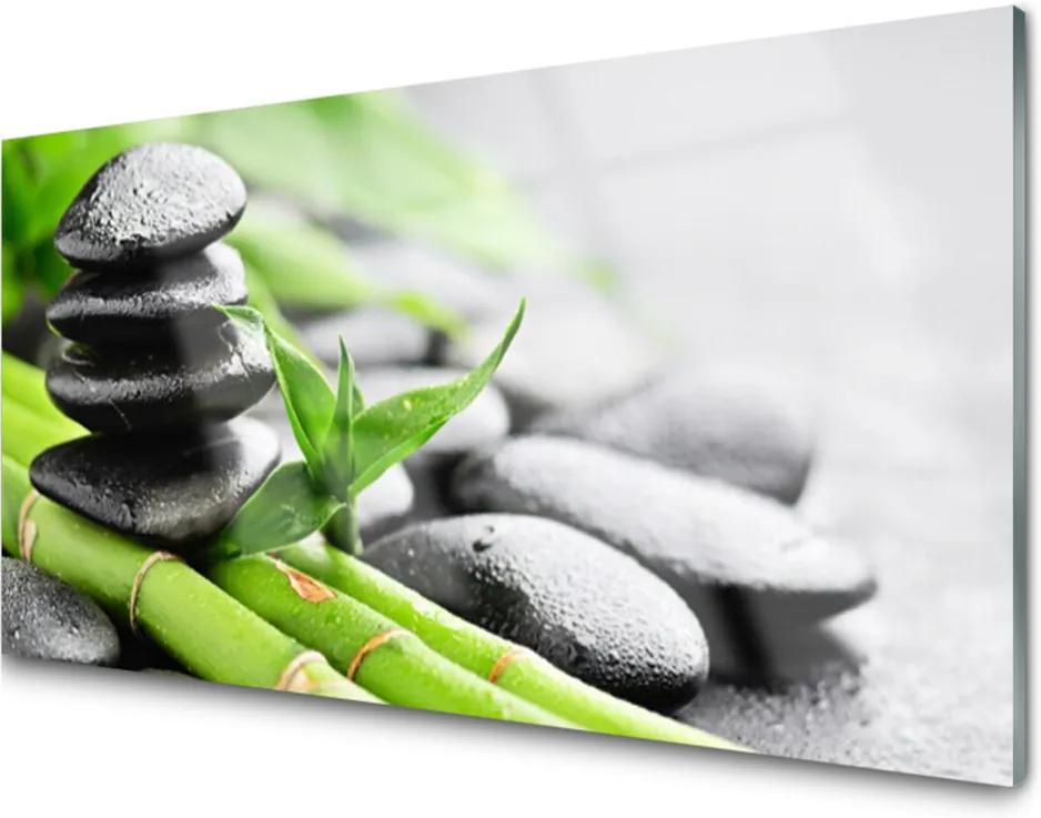 Obraz na skle Bambus kameny rostlina