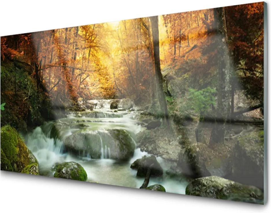 Skleněný obraz Vodopád Příroda Les Podzim
