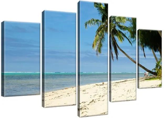 Obraz na plátne Havajská pláž – Brians101 100x63cm 837A_5D