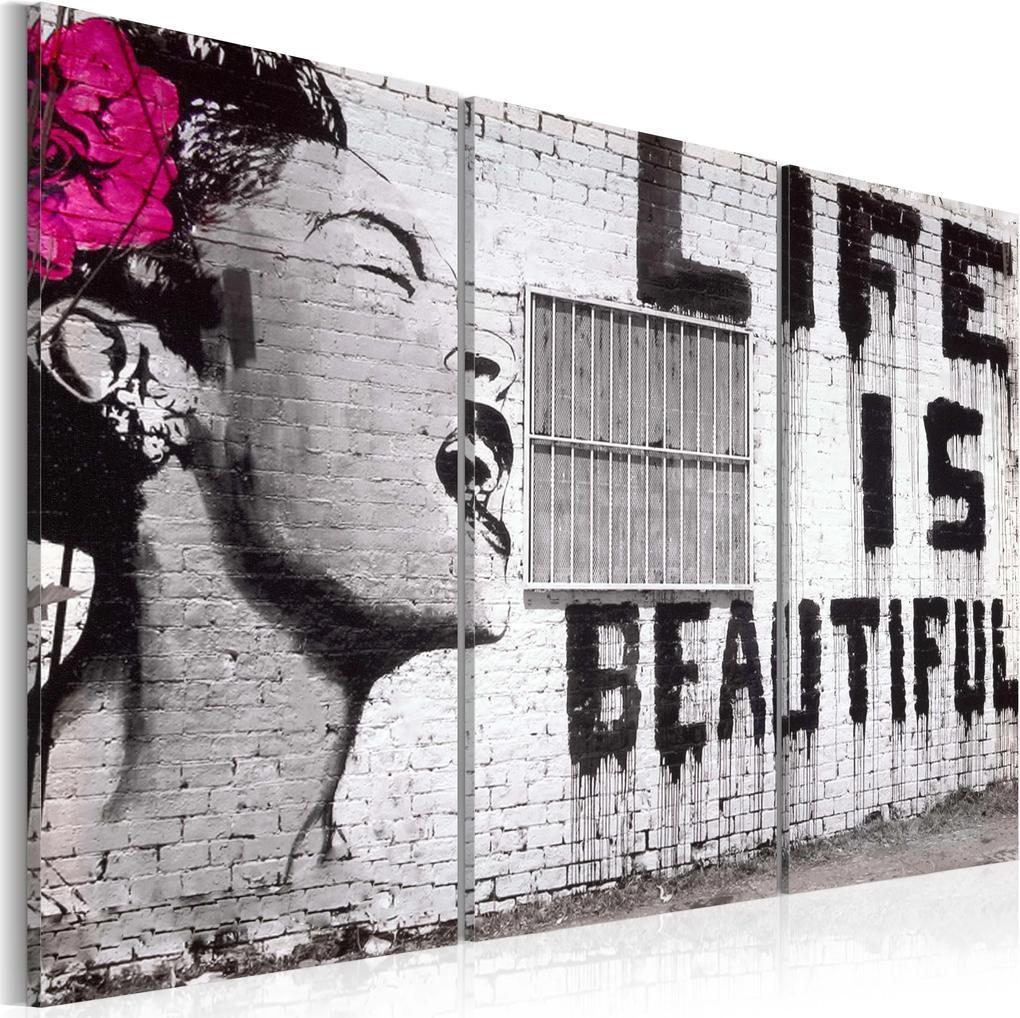 Obraz - Fullness of life 60x40