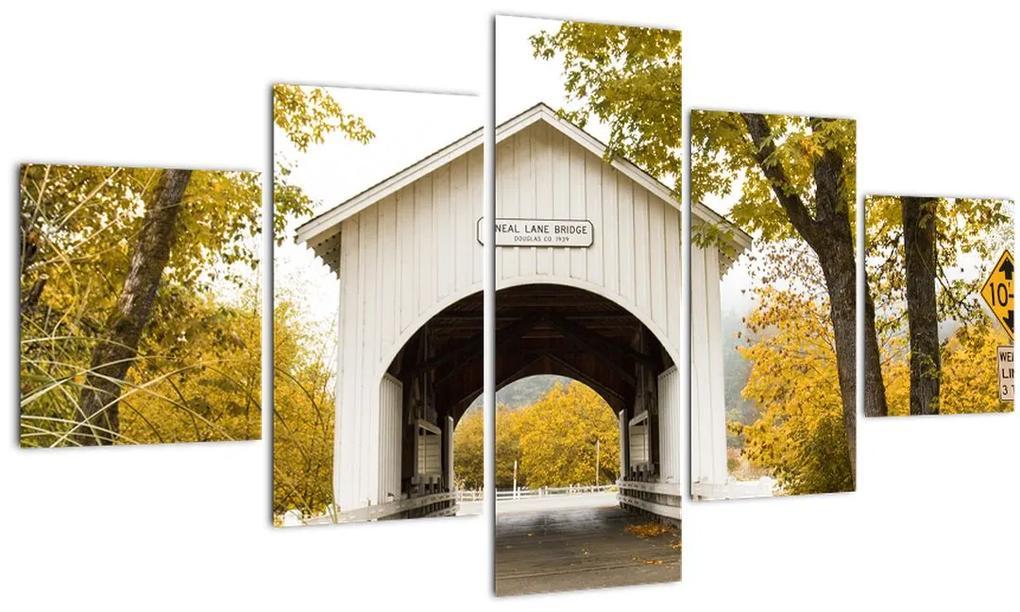 Obraz mosta v Oregone (125x70 cm), 40 ďalších rozmerov