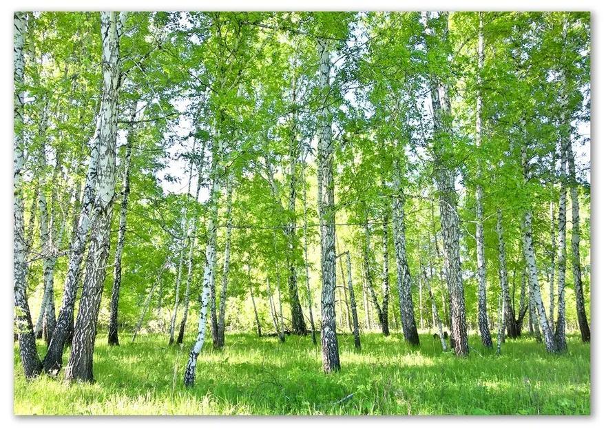 Foto-obraz fotografie na skle Brezy pl-osh-100x70-f-84161268