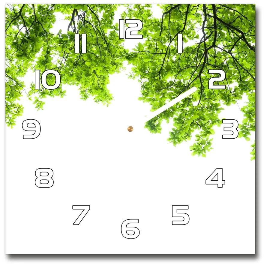 Sklenené hodiny štvorec Lístie duba pl_zsk_30x30_f_66522437