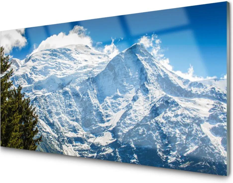 Obraz na skle Hora Strom Príroda