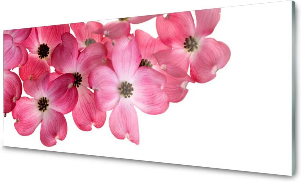 Akrylové obraz Skleněný květiny